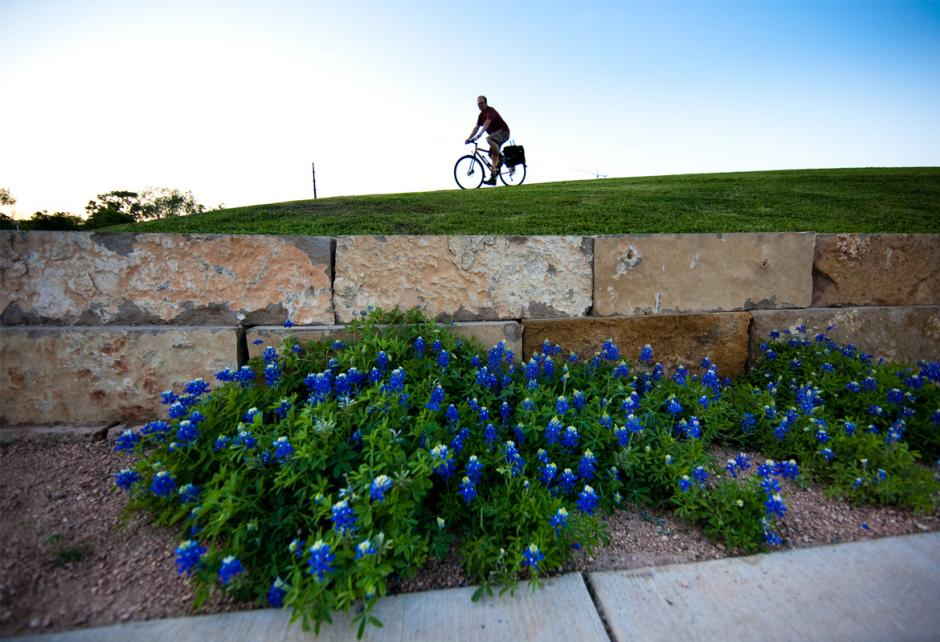 Bike rider on green grass with blue flowers
