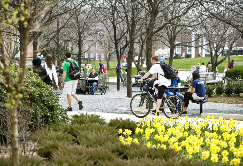Student riding bike on mall in springtime