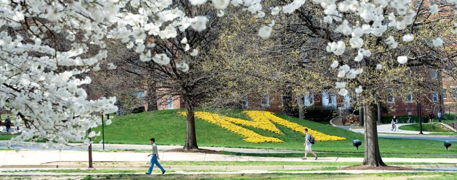 People walk past yellow flowers in the shape of an M