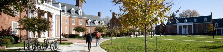 Students walking around residence halls on sunny day